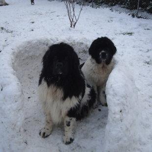 1ers pas sur la neige